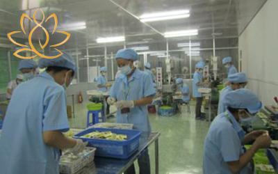 Gia công trà túi lọc, viên nang cứng, TPCN tại Vietnamhealth
